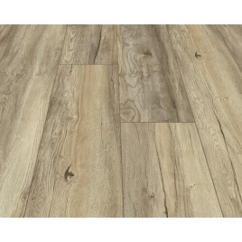 Panele podłogowe Harbour Oak Beige AC5 8mm Cottage My Floor